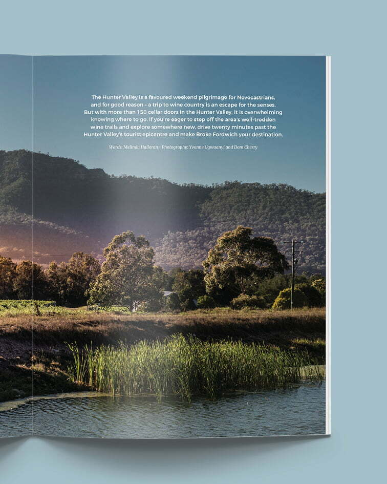 Swell Mag - Broke Wine Country